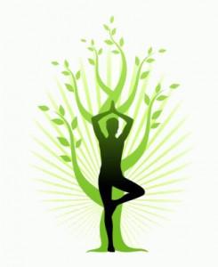 Vítáme vás na internetových stránkách jóga pro všechny